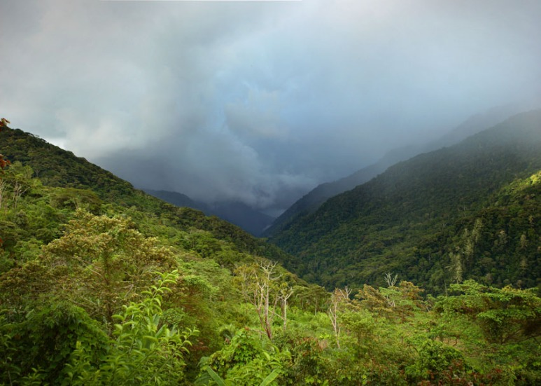 Eora Creek, Kokoda Track