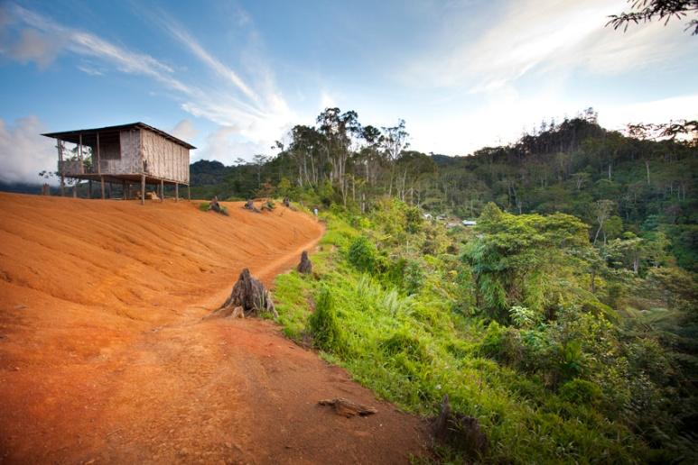 View looking south through New Nauro Village, Kokoda Track, Papua New Guinea