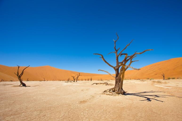 Namibian Dunes, Africa